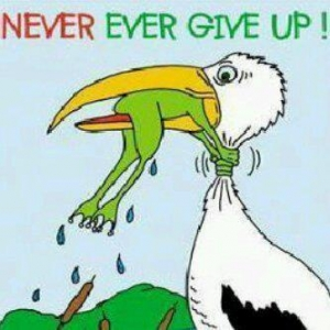 Never Give Up is a vital mindset for business success.